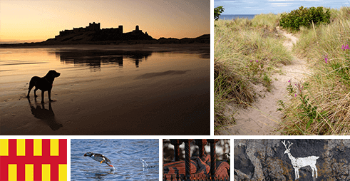 Various scenes and attractions around Bamburgh