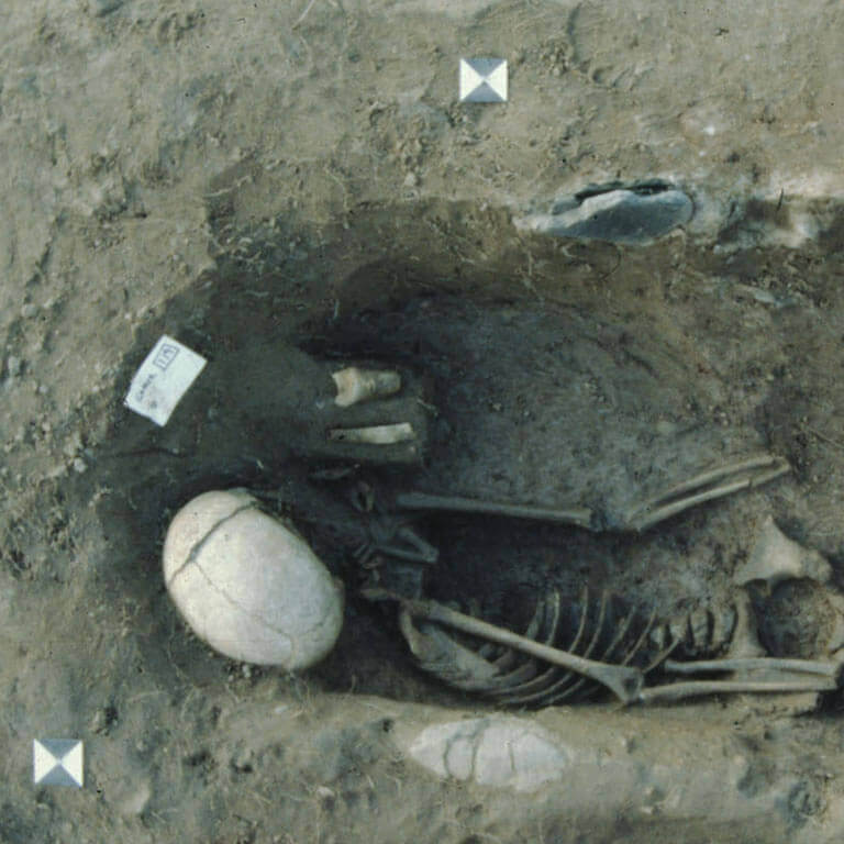 A skeleton with codename ādrinċeð as discovered in the bowl hole graveyard