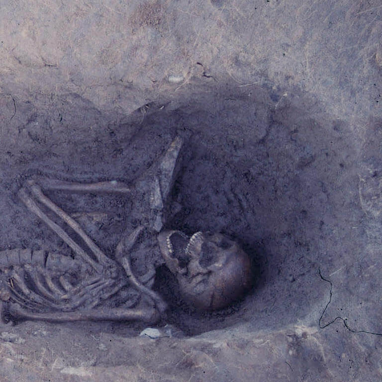 A skeleton with codename ofbeatan as discovered in the bowl hole graveyard