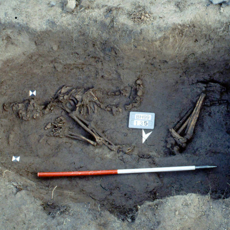 A skeleton with codename ælmessan as discovered in the bowl hole graveyard