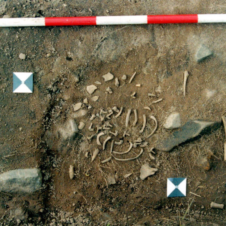 A skeleton with codename unrīm as discovered in the bowl hole graveyard