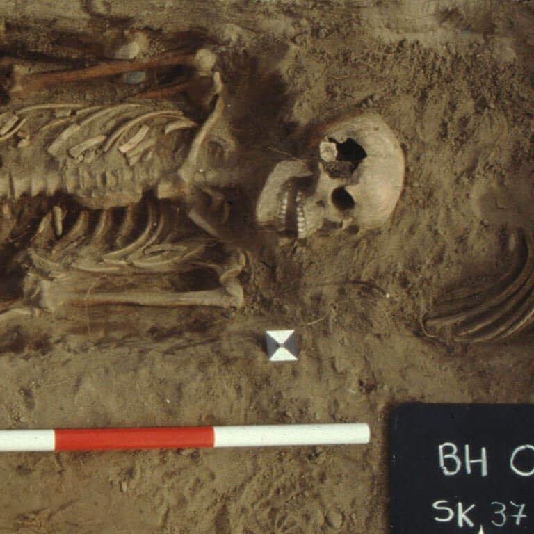 A skeleton with codename Ormæte as discovered in the bowl hole graveyard