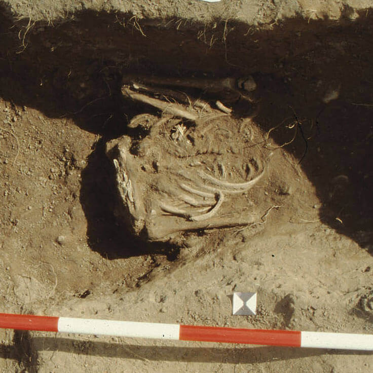 A skeleton with codename ortȳwe as discovered in the bowl hole graveyard