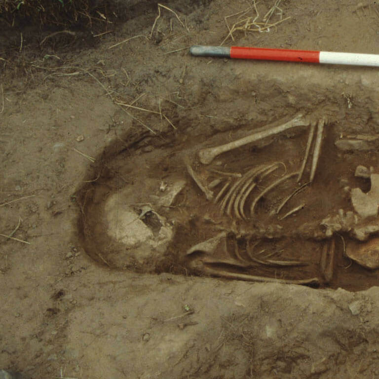 A skeleton with codename bēo as discovered in the bowl hole graveyard