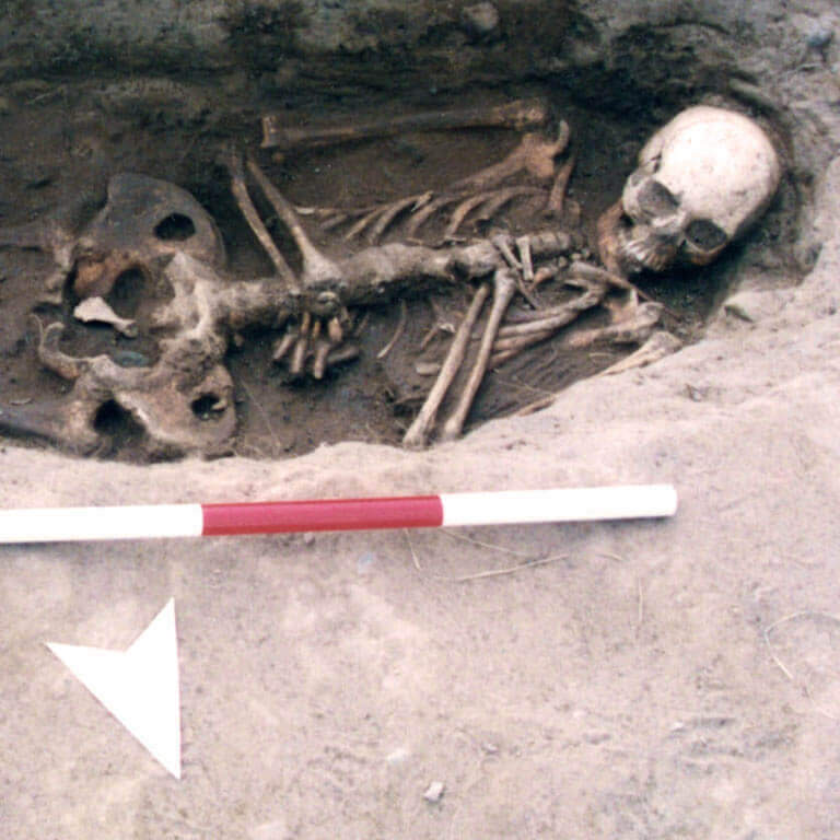 A skeleton with codename bæċ-bord as discovered in the bowl hole graveyard