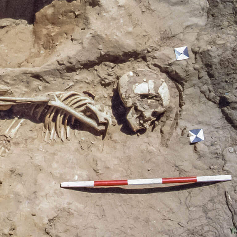 A skeleton with codename cwēn as discovered in the bowl hole graveyard