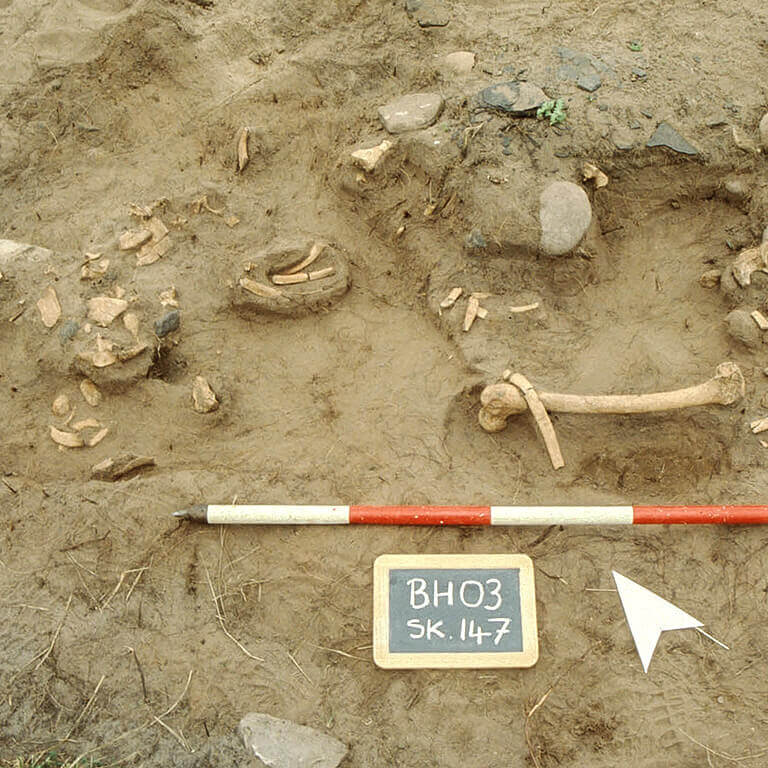 A skeleton with codename Draca as discovered in the bowl hole graveyard