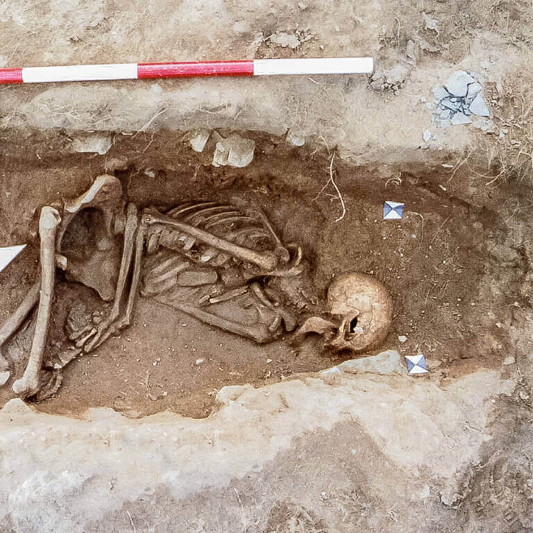A skeleton with codename Drēam as discovered in the bowl hole graveyard