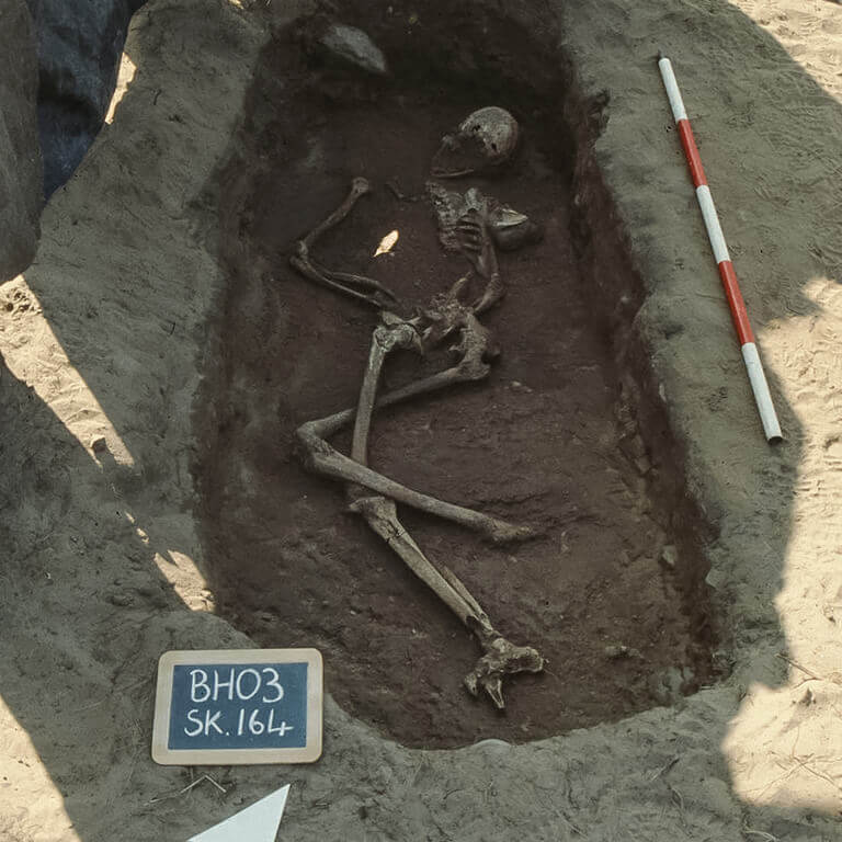 A skeleton with codename Drihtnēum as discovered in the bowl hole graveyard