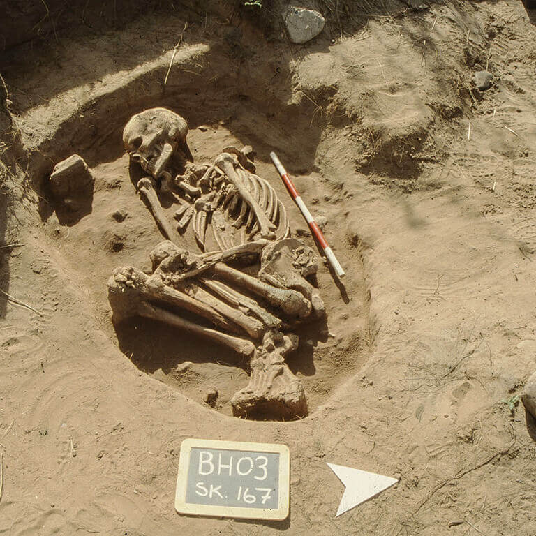 A skeleton with codename Fifel as discovered in the bowl hole graveyard