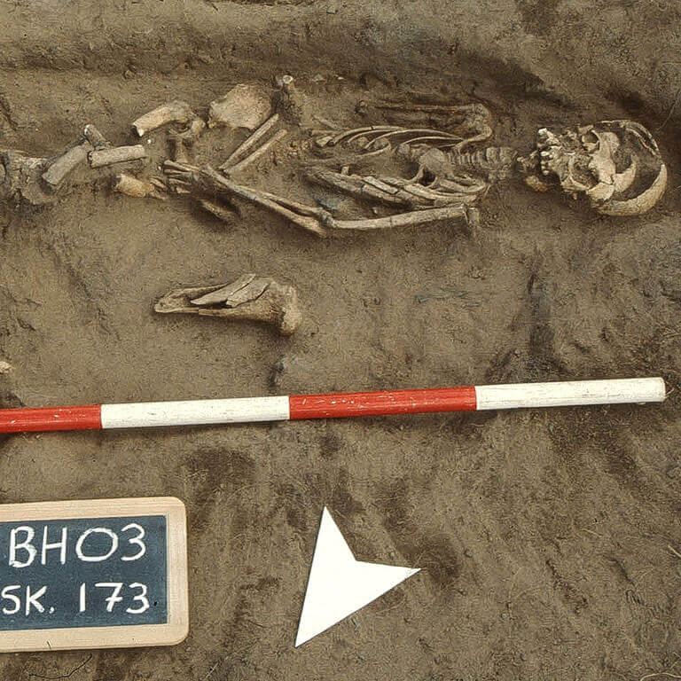 A skeleton with codename Folc as discovered in the bowl hole graveyard