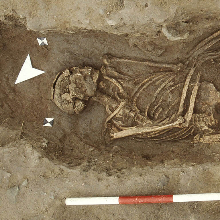 A skeleton with codename Frēoliċ as discovered in the bowl hole graveyard