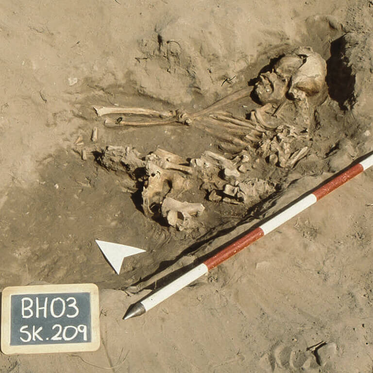 A skeleton with codename Hlynsode as discovered in the bowl hole graveyard