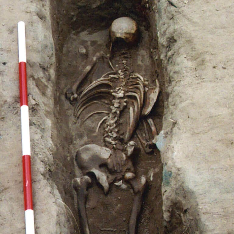 A skeleton with codename Heard-mōd as discovered in the bowl hole graveyard