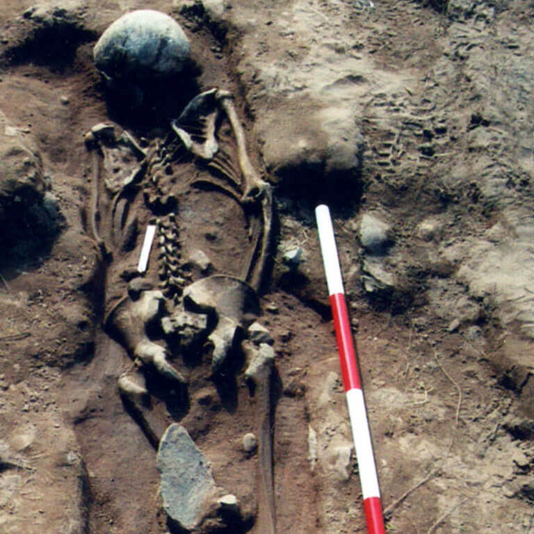 A skeleton with codename Hlæw as discovered in the bowl hole graveyard