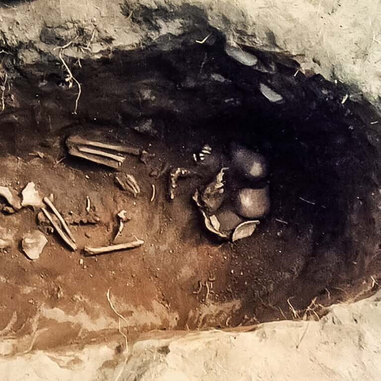 A skeleton with codename Hōpiġ as discovered in the bowl hole graveyard