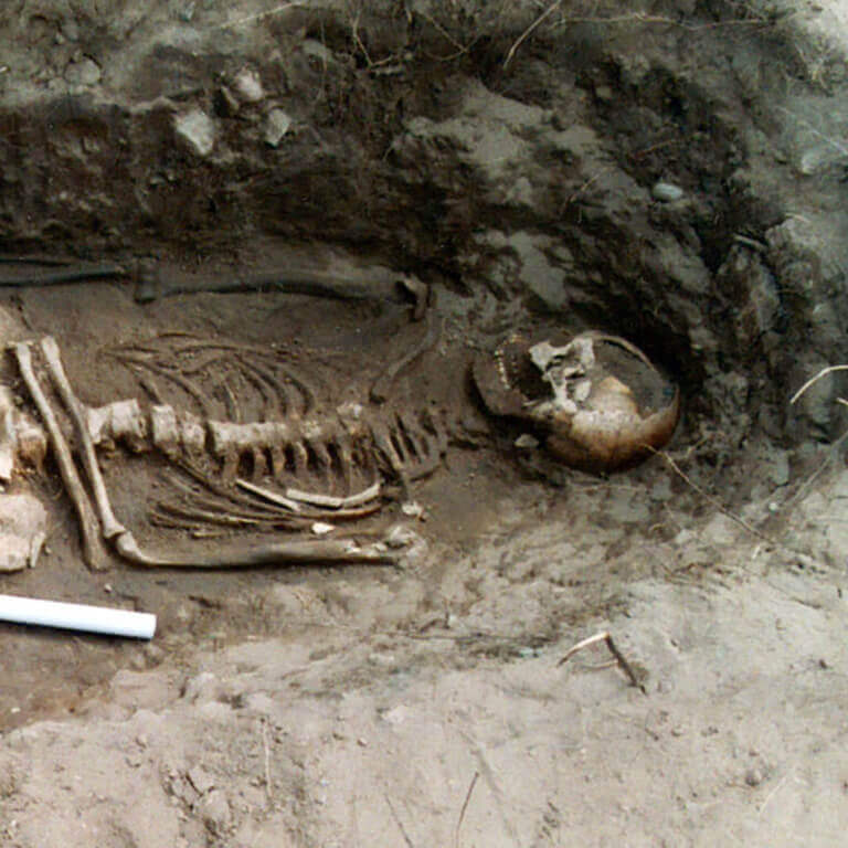 A skeleton with codename Lyb-lāc as discovered in the bowl hole graveyard