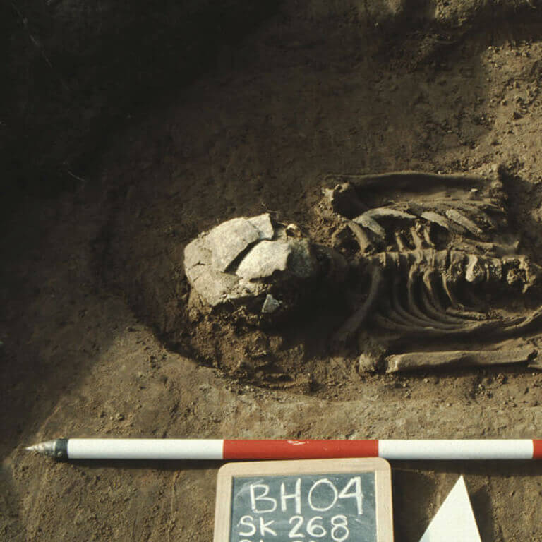 A skeleton with codename Niht-waco as discovered in the bowl hole graveyard
