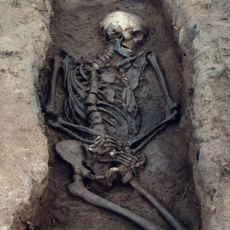 A skeleton with codename Rūn-cofa as discovered in the bowl hole graveyard
