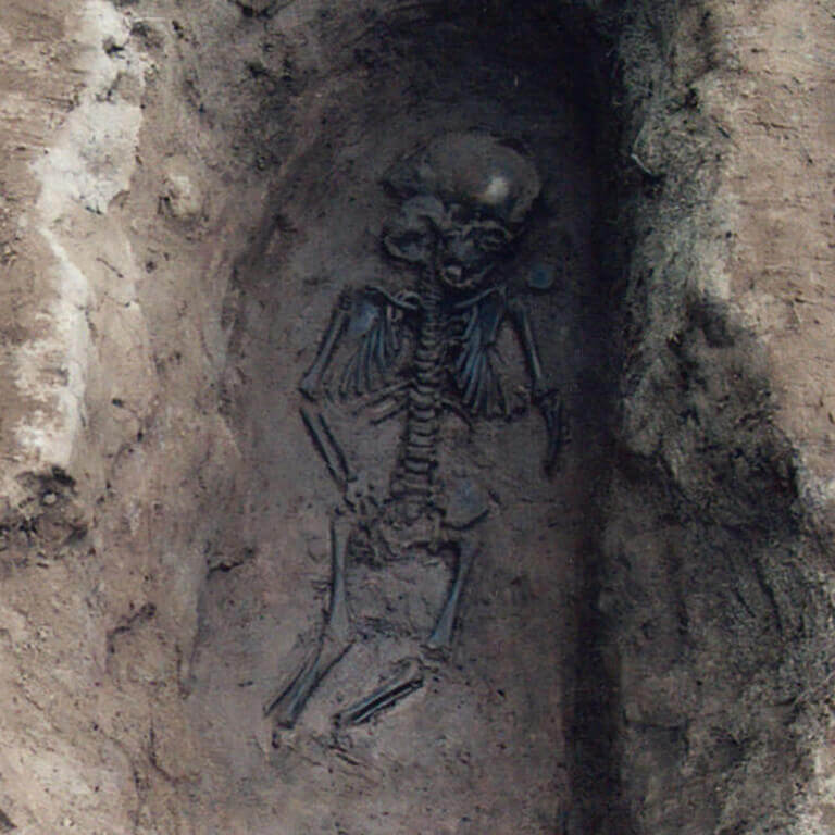 A skeleton with codename Rūm-heort as discovered in the bowl hole graveyard