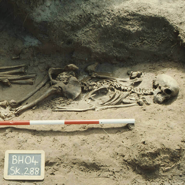 A skeleton with codename Ræswa as discovered in the bowl hole graveyard