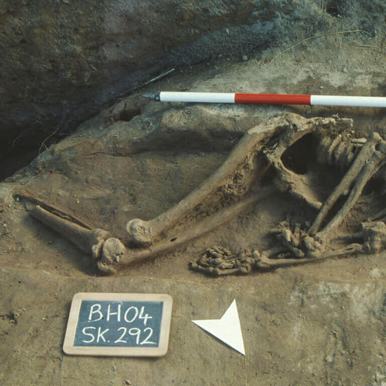 A skeleton with codename Sol-mōnað as discovered in the bowl hole graveyard