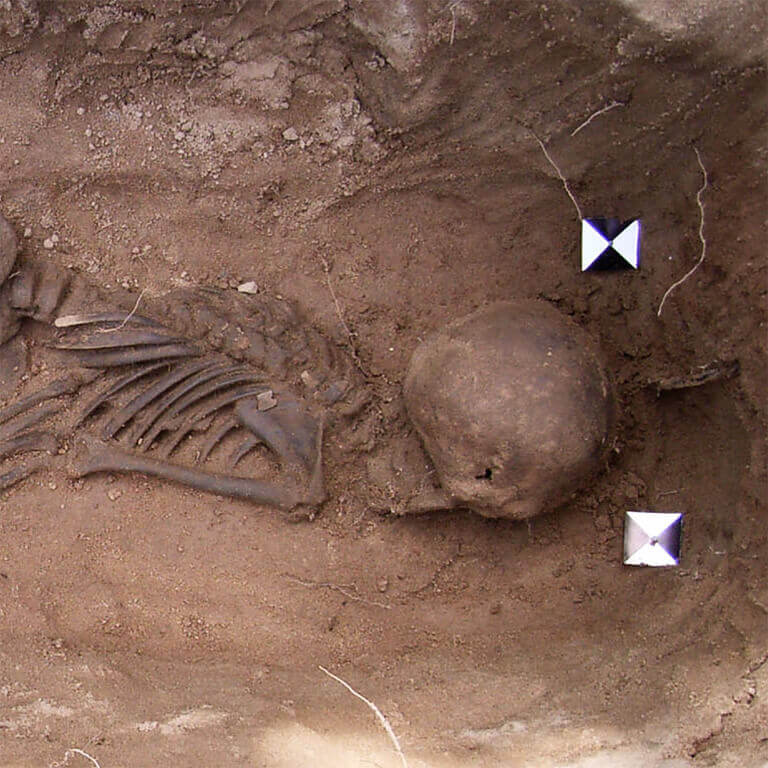 A skeleton with codename Wīcing as discovered in the bowl hole graveyard
