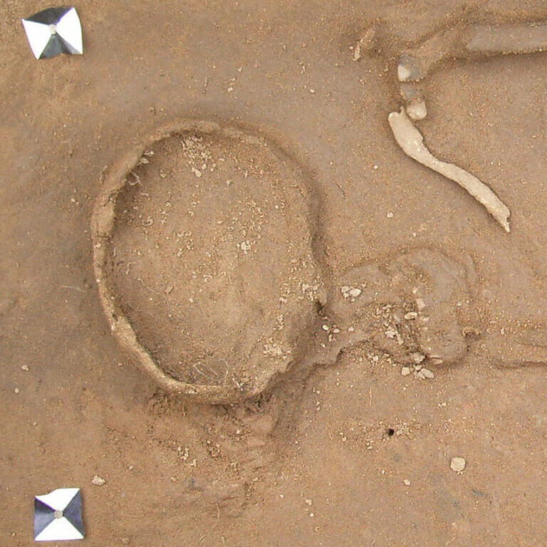 A skeleton with codename Wine as discovered in the bowl hole graveyard