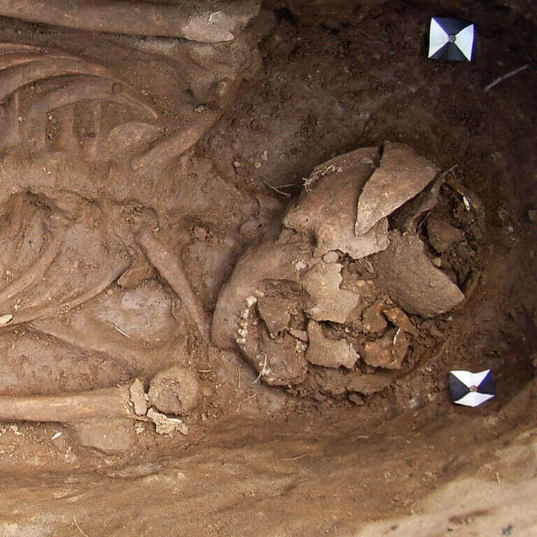 A skeleton with codename Ealdor-mann as discovered in the bowl hole graveyard