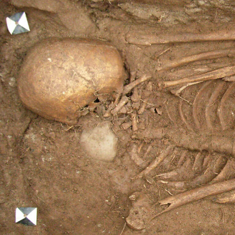 A skeleton with codename Ġe-bolgen as discovered in the bowl hole graveyard