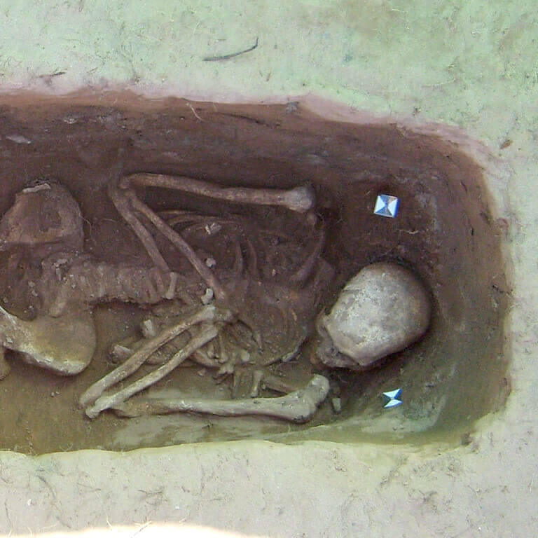 A skeleton with codename Wyrm-cynn as discovered in the bowl hole graveyard