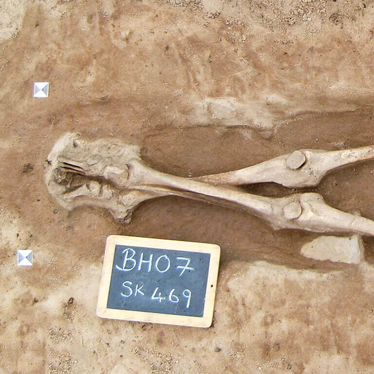 A skeleton with codename Wæl-stōw as discovered in the bowl hole graveyard
