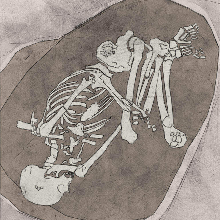 A drawing of skeleton with codename Fifel as discovered in the bowl hole graveyard