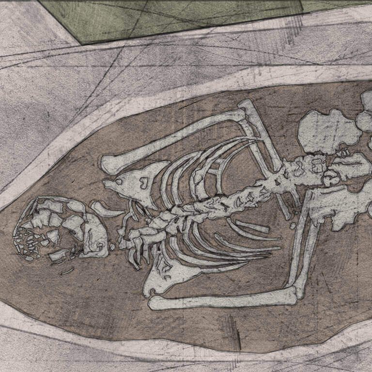 A drawing of skeleton with codename Flota as discovered in the bowl hole graveyard