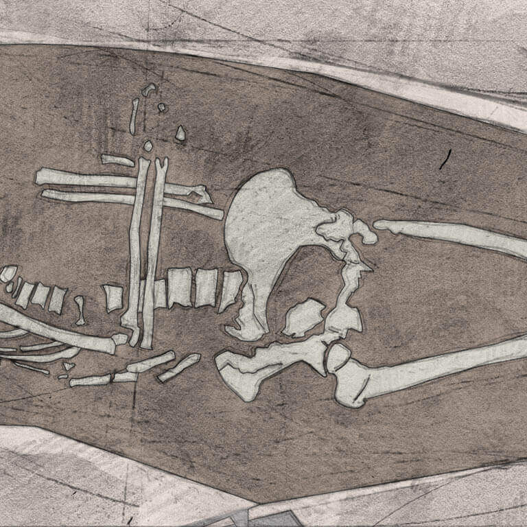 A drawing of skeleton with codename Leġer as discovered in the bowl hole graveyard