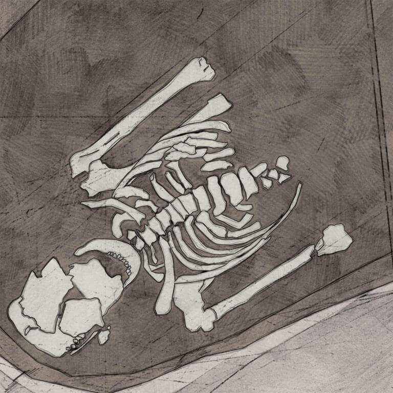 A drawing of skeleton with codename Niht-waco as discovered in the bowl hole graveyard
