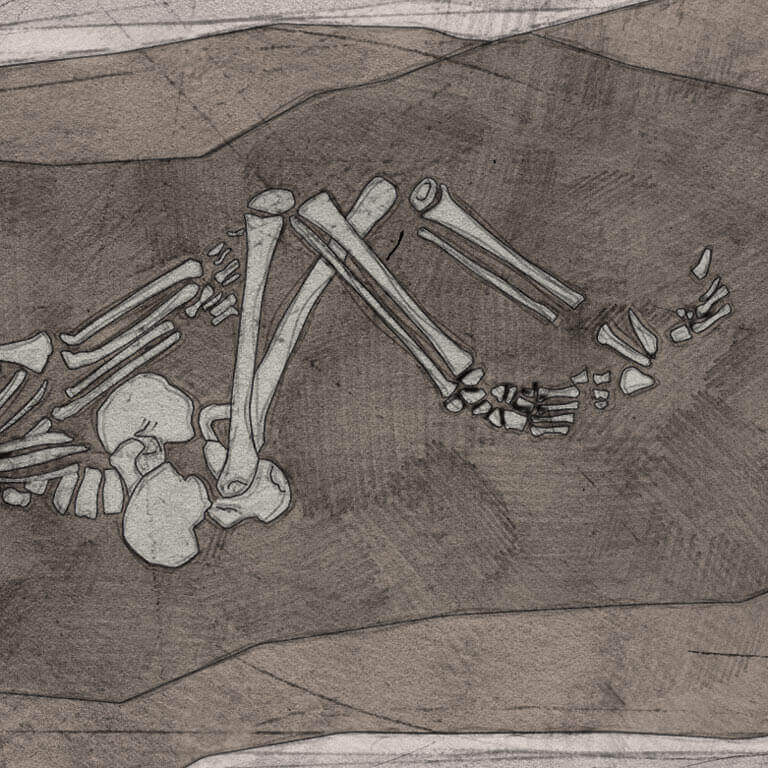 A drawing of skeleton with codename Wīcing as discovered in the bowl hole graveyard