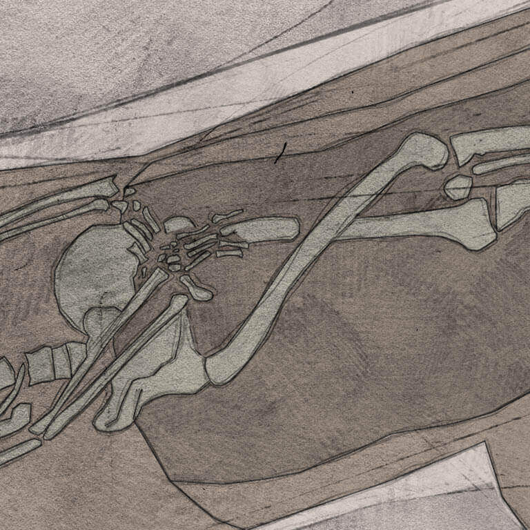 A drawing of skeleton with codename Ēaġe-ðyrel as discovered in the bowl hole graveyard