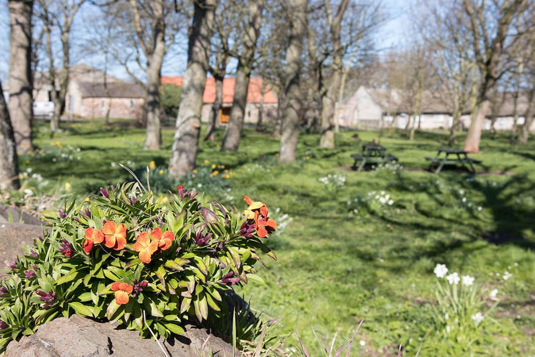The village green at Bamburgh